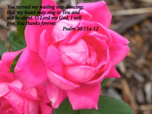 Psalms 30 11